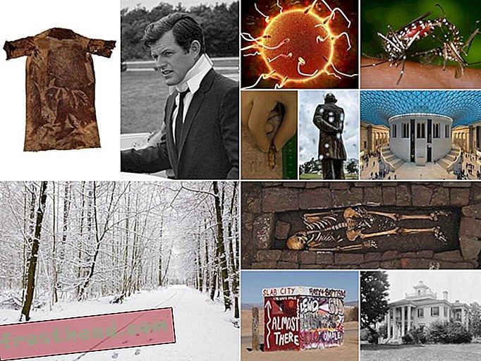 artikel, seni & budaya, muzik & filem, di smithsonian, sejarah, arkeologi, sains - 11 Kisah Teratas kami pada tahun 2018