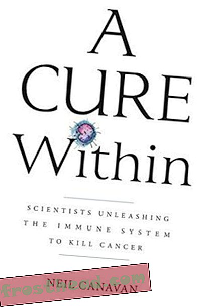 Preview thumbnail for 'A Cure Within: Scientists Unleashing The Immune System to Kill Cancer
