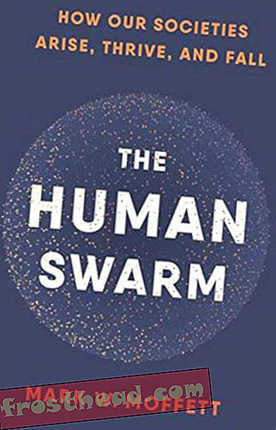 Preview thumbnail for 'The Human Swarm: How Our Societies Arise, Thrive, and Fall