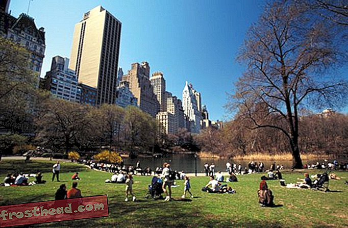 New York - Destinations culturelles